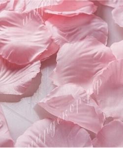 Лепестки роз, нежно-розовые