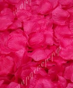 Лепестки роз, розовые