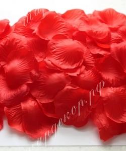 Лепестки роз, красные