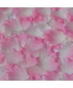 Лепестки роз, бело-розовые