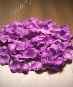 Лепестки роз, сиреневые